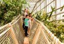 Tropenhaus Wohusen: Die Luzerner Tropen erleben